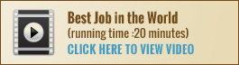 _best-job-video-button